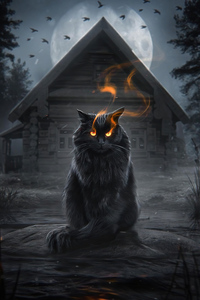 1080x2280 Cat Fire Eyes