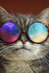 Cat Glasses Party Cool Painting