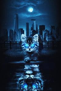 Cat Glowing Eyes 4k