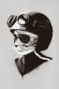 1125x2436 Cat Helmet Minimal Art 5k