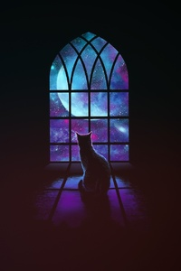 Cat Looking Outside Window Minimalism Art