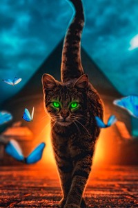 1440x2960 Cat Magical Walk 4k