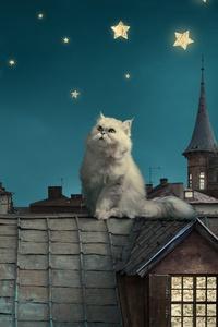 480x800 Cat Moon Stars Digital Art Dreamy 5k