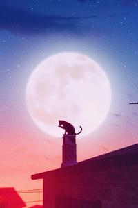 240x320 Cat Roof Big Moon 4k