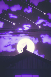 640x960 Cat Rooftop Silhouette