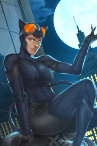 480x800 Catwoman New Artwork