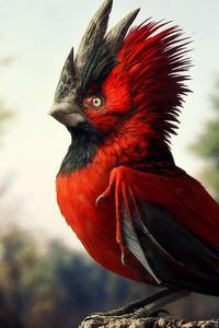 480x800 Cgi Bird 5k