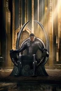 1440x2960 Chadwick Aaron Boseman Black Panther 8k