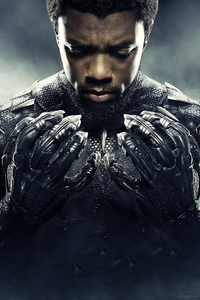 640x1136 Chadwick Boseman Black Panther 2018 Movie