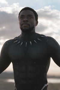 Chadwick Boseman Black Panther Movie