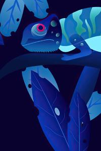 480x854 Chameleon 4k