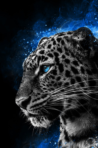 1080x1920 Cheetah Galaxy Eyes