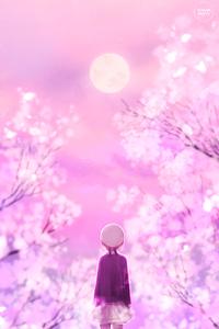 1242x2688 Cherry Blossom Walk