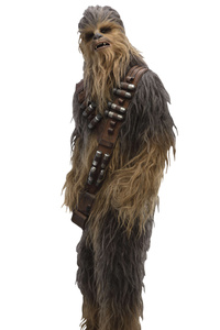 Chewbacca In Solo A Star Wars Story Movie 2018