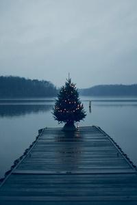 Christmas Tree On Pier