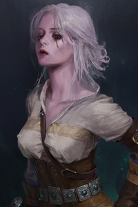 Ciri The Witcher 3 Wild Hunt Artwork
