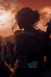 Ciri The Witcher 3 Windy Hair 10k