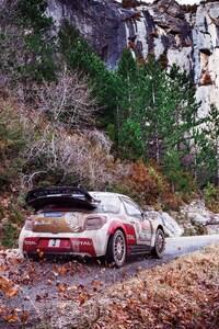 320x480 Citroen Ds3 Rally Fall