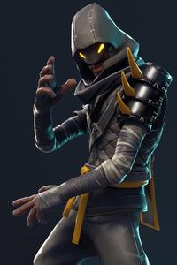 Cloaked Star Ninja Fortnite Battle Royale