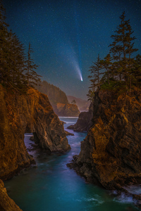 720x1280 Coast Stars Scenery Oregon Night Trees 5k
