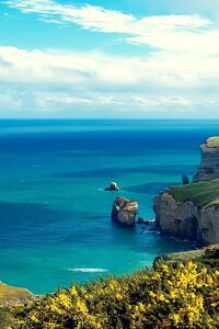 Coastal Cliff Island