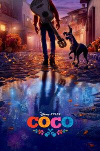 Coco 5k