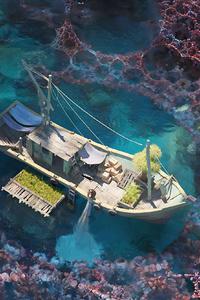 800x1280 Coral Village