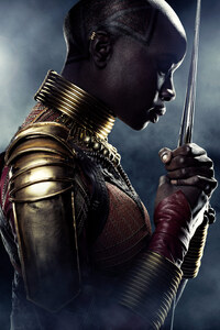 Danai Gurira In Black Panther Poster 5k