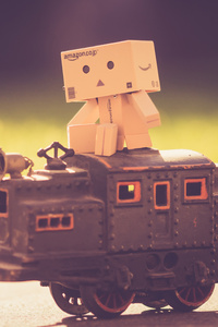 1080x2280 Danbo Train 5k
