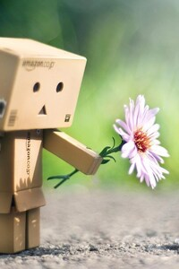 1440x2960 Danbo With Flower