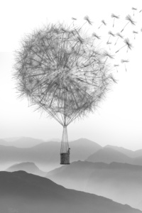 Dandelion Air Balloon