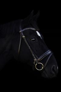 1080x2280 Dark Horse