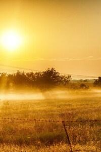 720x1280 Dawn Grass In Summer Light