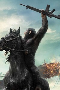 720x1280 Dawn of the Planet of the Apes Movie