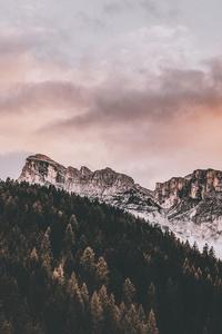 Daylight Rocky Mountain Landscape