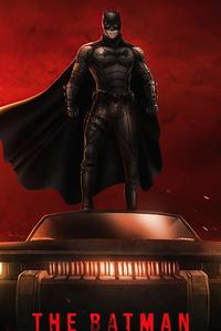 Dc The Batman