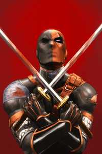 1080x2280 Deathstroke With Two Swords
