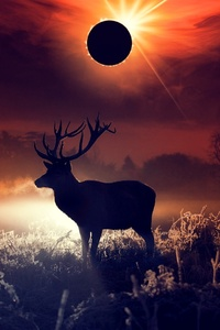 Deer Fantasy Art
