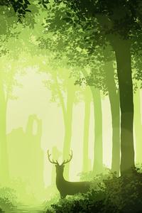1080x2160 Deer Forest 4k