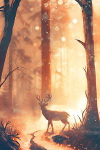 Deer Forest Sunbeams