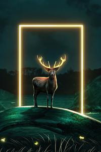 Deer Glow Door 5k