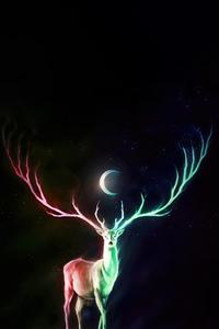 720x1280 Deer Moon