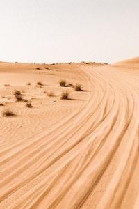 Desert Photography 4k
