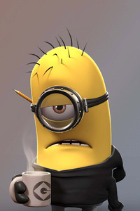 1242x2688 Despicable Me Angry Minion