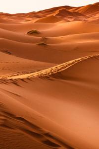 Dessert Sand Dunes 8k