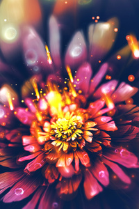 Digital Flower Fractal Arts 4k
