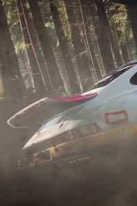 800x1280 Dirt Rally 2