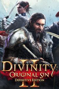 480x800 Divinity Original Sin 2 4k