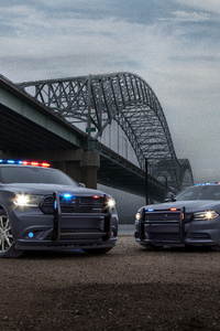 Dodge Charger And Durango