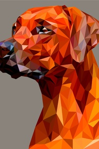 Dog Polygon Facets